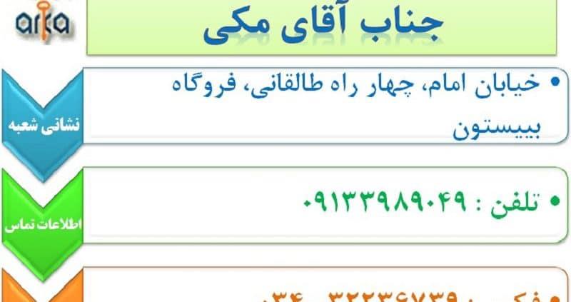 نمایندگی کرمان- گاو صندوق آرکا